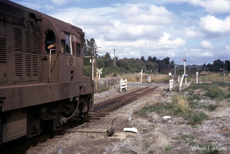 Da1463 at Mamaku-Rotorua Shunt 30March1973 Wilson Lythgoe(small).jpg