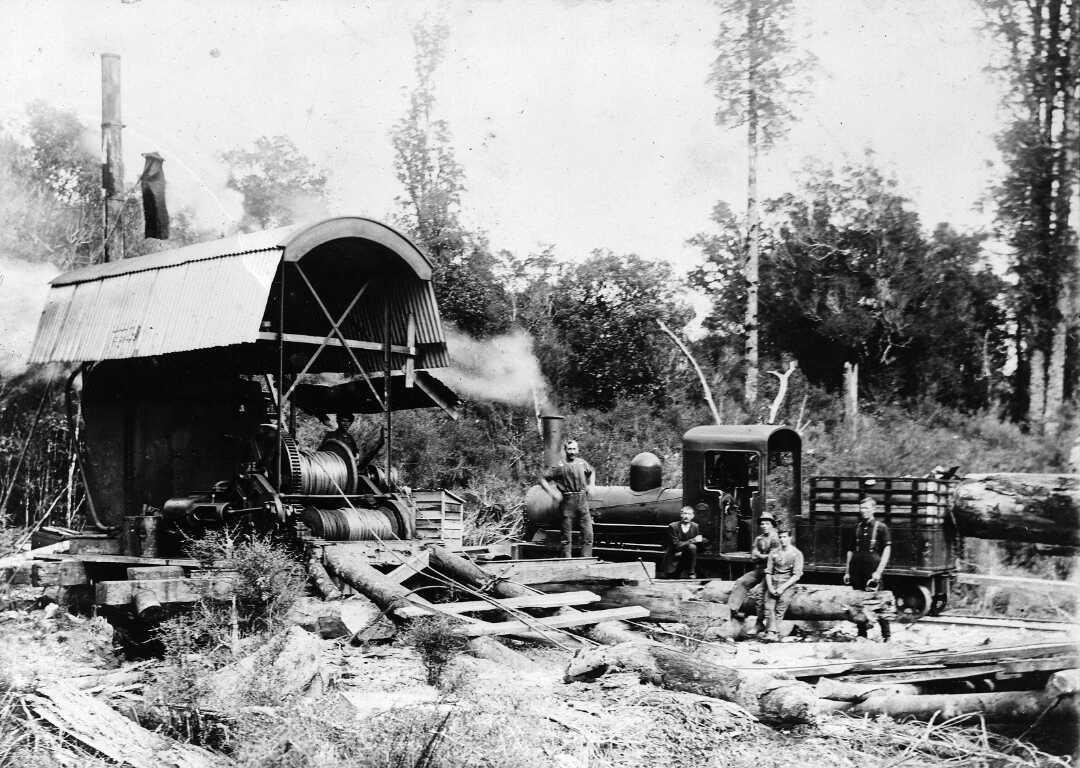 J.Johnston_0-4-0_Lake_Brunner_Sawmilling_Co..jpg