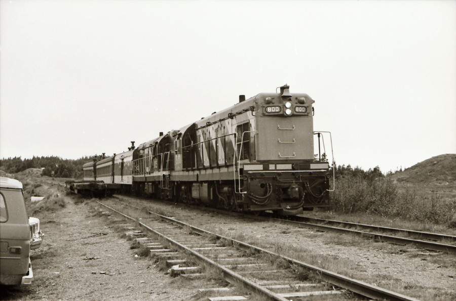 1 Nfld 1982 (2).jpg