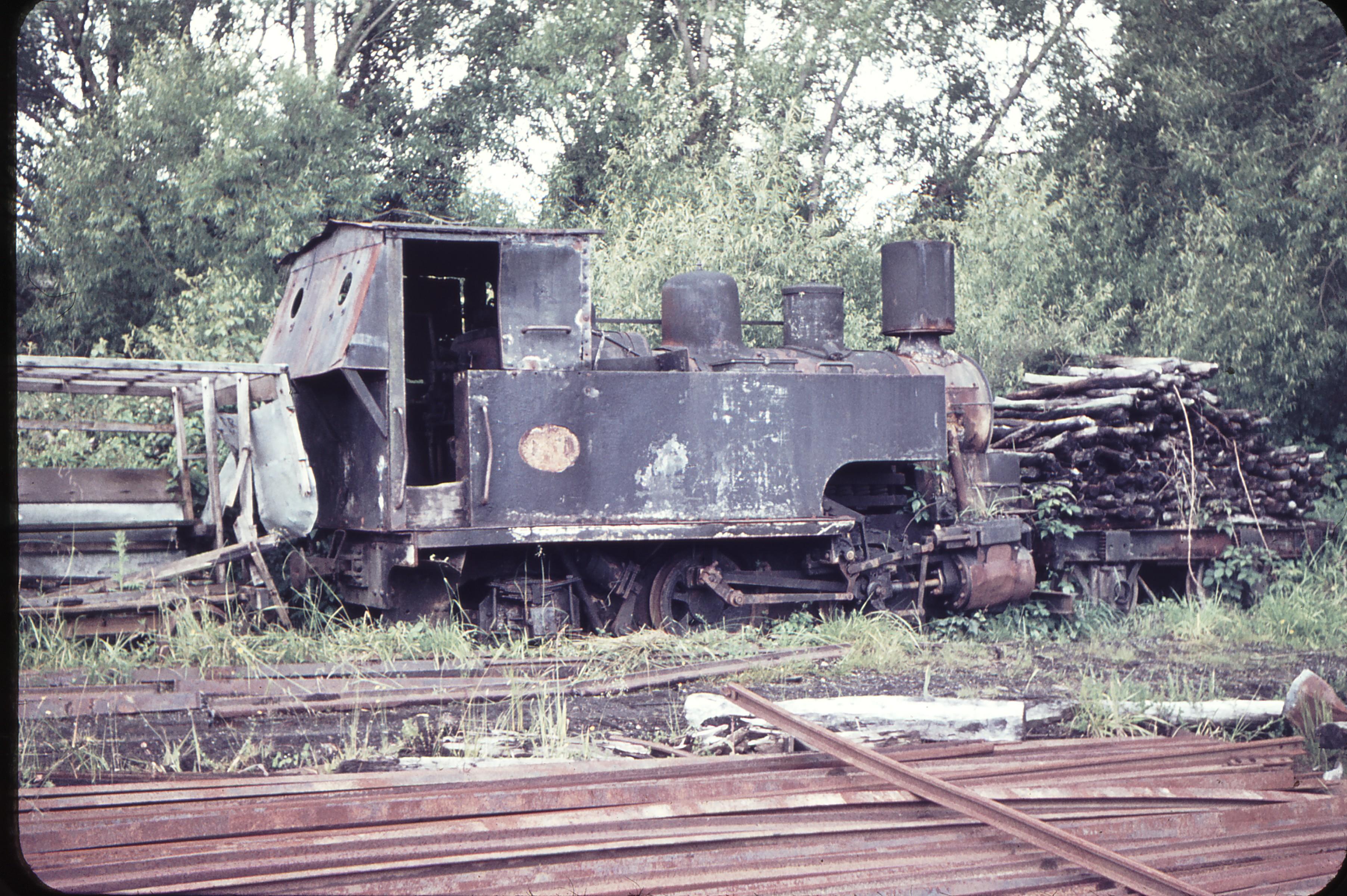 103753_Weston_Langford_Lake Brunner Sawmilling Co.jpg